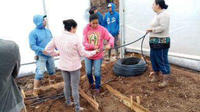 Photo of Gobierno De Morelia Apoya A Mezcaleros Con Construcción De Invernaderos