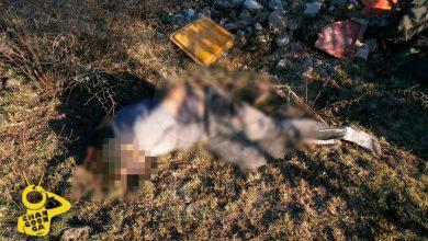 Photo of #Morelia Comienza La Semana Con Muertos: Hallan 2 Maniatados Y Torturados