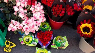 Photo of No Gastes De Más: Esto Cuestan Las Flores En Morelia, Previo A San Valentín