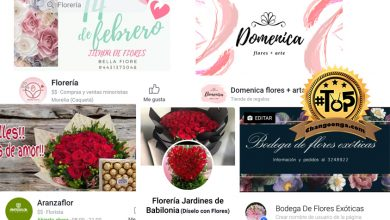 Photo of #Top5 De Florerías Chidas En Morelia Para Este San Valentín