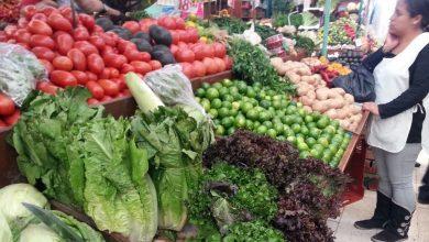 Photo of #Michoacán Verduras Y Frutas Aumentarán De Precio Por Recortes Presupuestales Al Campo