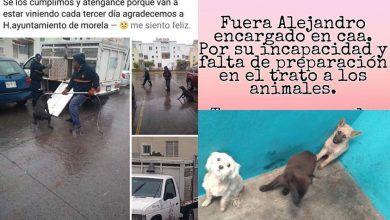 Photo of #Morelia Animalistas Confirman Manifestación Fuera Del Centro De Atención Animal