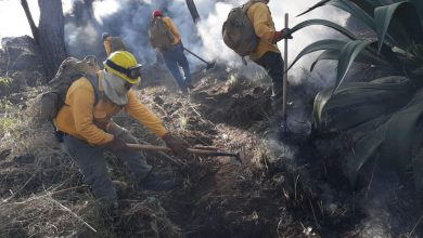 Photo of Conforman Brigadas De Combate De Incendios Forestales En 10 Comunidades De Uruapan