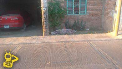 Photo of #Michoacán Dejan Muerta A Mujer Afuera De Casa; Estaba Encobijada Y Amarrada