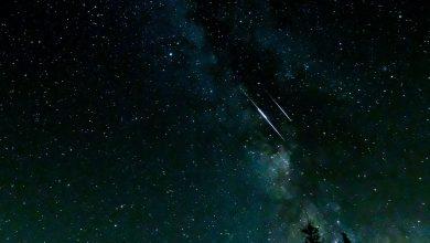 ¡HOY! Lluvia De estrellas En Su Punto Máximo De Observación… No Te La Pierdas