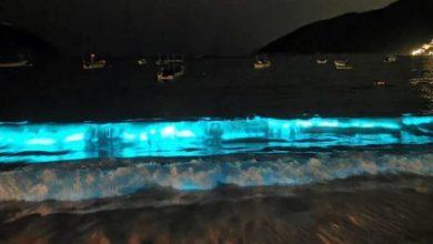 Photo of Tras 60 Años El Mar De Acapulco Vuelve A 'Brillar' De Noche