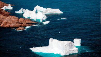 Photo of Lo Que Nos Faltaba: La Antártida Registra Su 1ra Ola De Calor