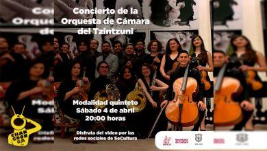 Photo of Músicos Michoacanos Darán Concierto Online Por Cuarentena, HOY