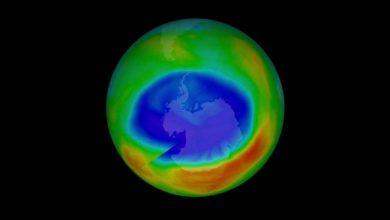 Photo of ¿La Cuarentena? ONU Informa Que Cerró Un Agujero En Capa De Ozono