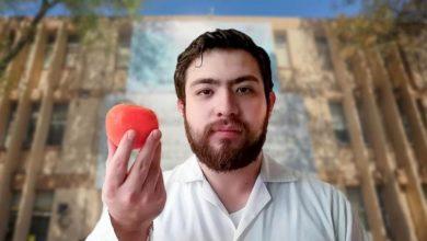"""Photo of Mexicano Cultiva """"Súper Tomates"""" Para Crear Vacuna Comestible Contra COVID-19"""
