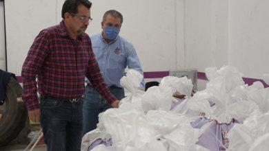 Photo of #Morelia Agiliza Raúl Morón Entrega De Despensas Del Programa De Seguridad Alimentaria