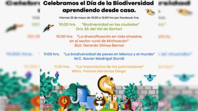 Photo of #Morelia Con Varias Conferencias, Celebra Zoológico Día De La Biodiversidad
