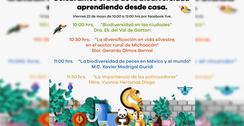 #Morelia Con Varias Conferencias, Celebra Zoológico Día De La Biodiversidad