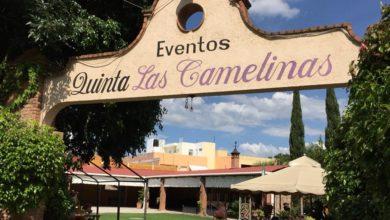Photo of #Morelia Clausuran Salón De Fiestas Por Abrir Pese A COVID-19, Había 40 Personas