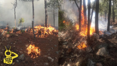 """Photo of Sigue Incendio En San Miguel Del Monte: """"Funcionarios Se Tomaron Foto Y Se Fueron"""", Acusan"""