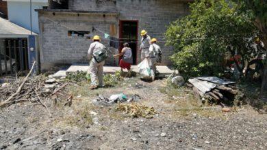 Photo of En Michoacán Comienza A Aumentar Brote De Dengue