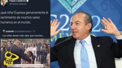 Le Dicen Gallina Teporocha A Calderón Por Borrar Mensaje Contra Donald Trump