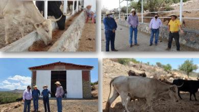 Photo of #Morelia Habemus Nueva Destiladora De Mezcal, Falta Sólo 30% De Construcción