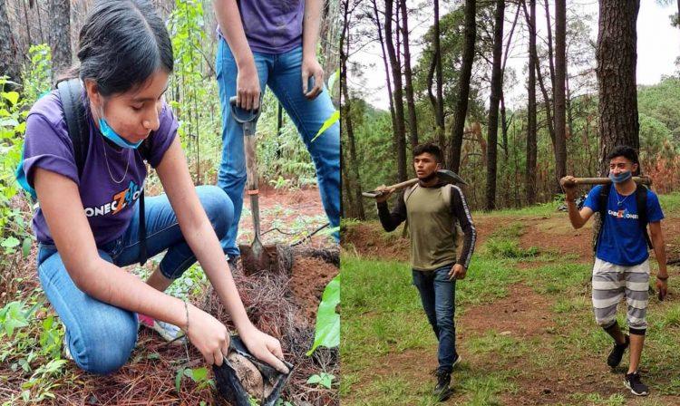 #Michoacán En Solo Dos Días Jóvenes Reforestan 2 Mil 500 Árboles