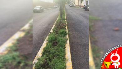 Photo of #Denúnciamesta Aprovechan que lámparas no sirven y roban cableado al lado de la Central