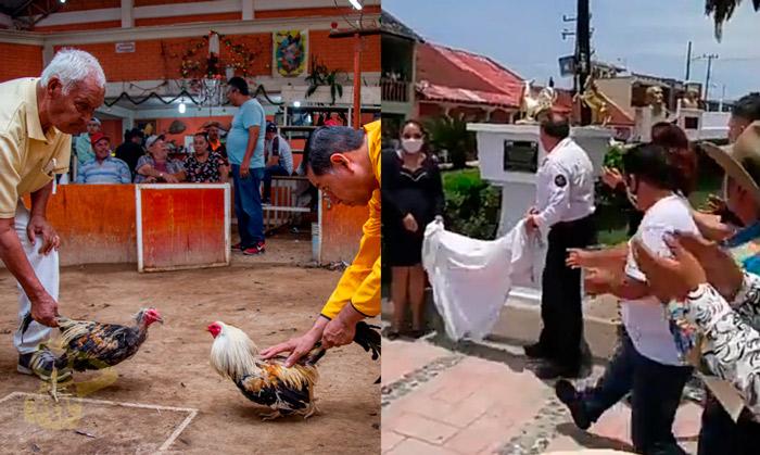 """Declaran A Las Peleas De Gallos Como """"Patrimonio Cultural"""", En Hidalgo"""