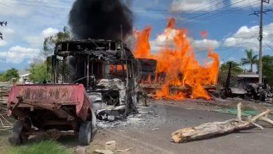 Photo of Polis Michoacán Y GN: Tras Bloqueos En Aguililla, Detienen A 4 Con Fusiles Y Cartuchos