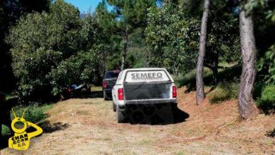 #Michoacán Entran A Huerta De Aguacate Y Matan A Balazos A 2 Abuelitos