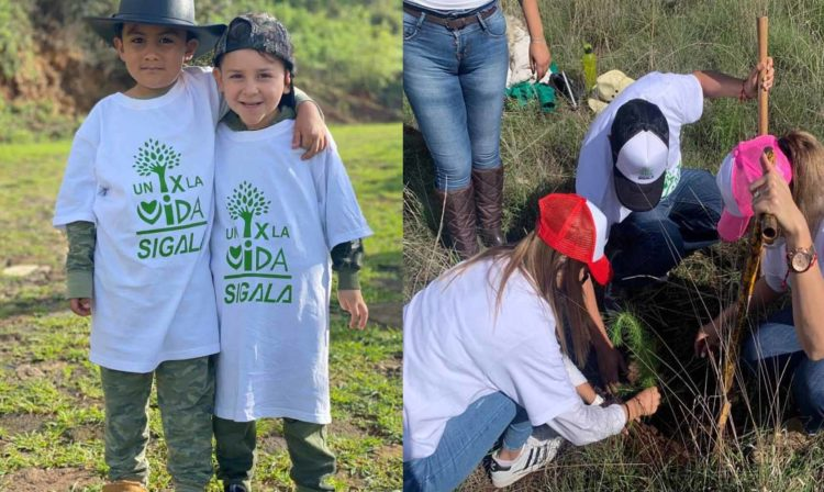 """#Michoacán PRD Se Suma A Campaña De Reforestación """"Un Árbol Por La Vida"""""""