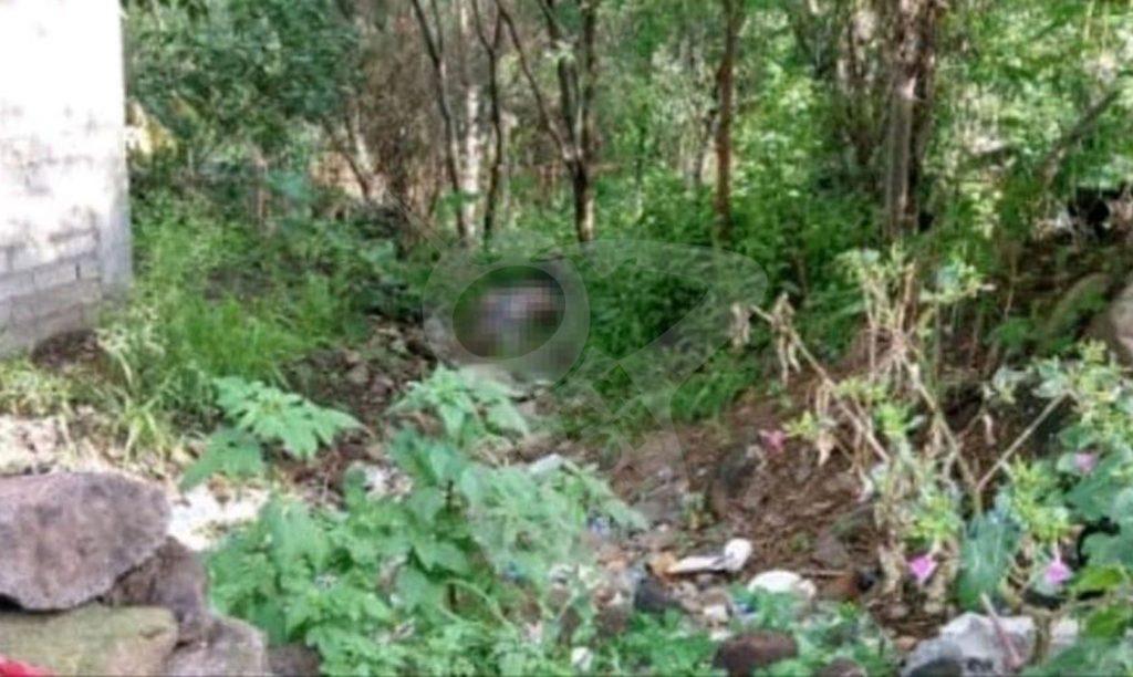 Photo of #Cuitzeo Encuentran Hombre Asesinado A Golpes En San Agustín Del Pulque