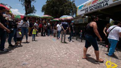 Visitantes No Respetan Sana Distancia En Reapertura del Zoológico de Morelia