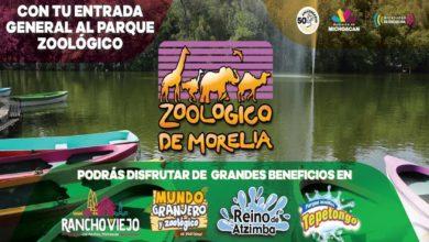 ¡50 AÑOS! Celebrará Zoo Moreliano Con Fantásticas Atracciones