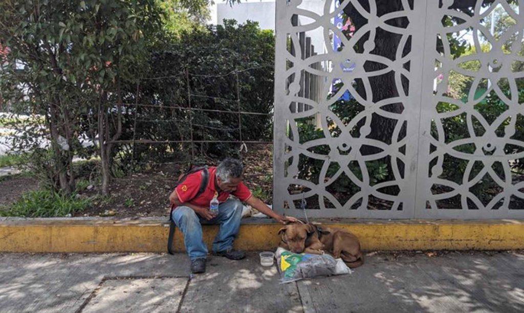 Photo of COVID-19 Le Quitó Su Trabajo Y Su Hogar, Lo Único Que Tiene Es A Su Fiel Lomito