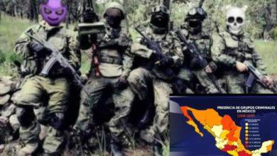 En Michoacán Hay Más De 20 Cárteles: Especialista