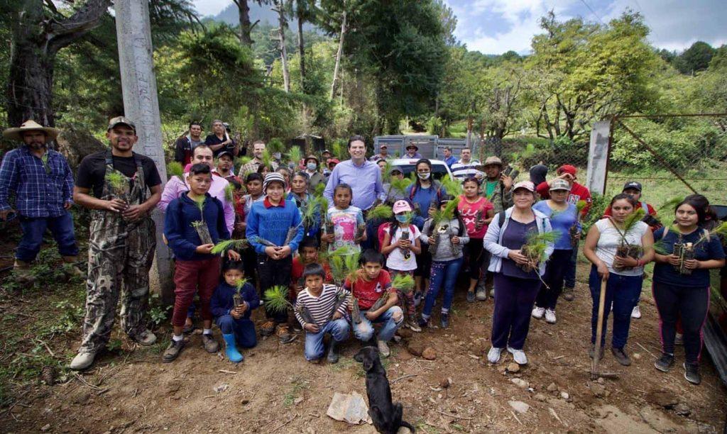 Photo of Alfonso Martínez Encabeza Reforestación Tras Incendio En Zitácuaro