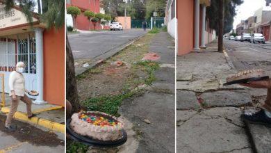 Photo of Morelianos Celebran Con Pastel 1er Aniversario De Bache Reportado E Ignorado