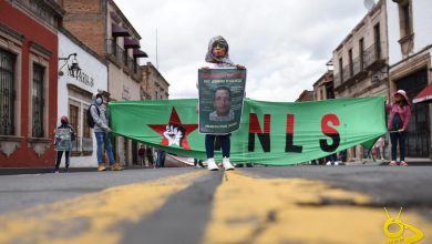Photo of Nieta De Leobardo Exige Liberación Inmediata De Su Abuelo En Marcha Del FNLS