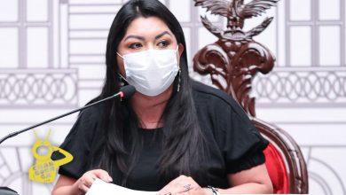 Photo of Ex Presidenta De Congreso Michoacano Destaca Trabajo Legislativo Pese A COVID-19