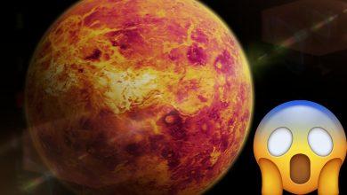 Photo of El 2020 Sigue Dando Sorpresas: Encuentran Indicios De Vida En Venus