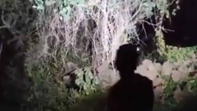 #Video Presuntos Narcos Levantan A Youtubers En Morelia