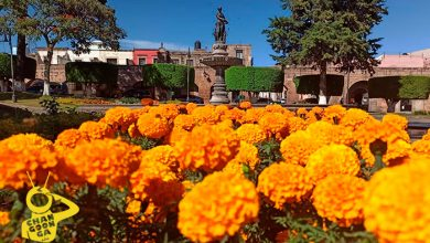 Photo of #Morelia Plaza Villalongín Ya Luce 'Vestida' De Cempasúchil