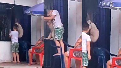 Photo of ¡Indignante! Niño Cuelga A Peludito Como Piñata; Redes Explotan Por Maltrato Animal