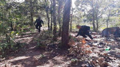 Photo of #Michoacán SSP Y Sedena Destruyen Campamento Relacionado Con Crimen Organizado