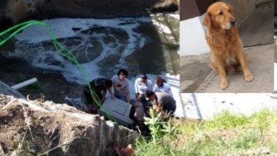 Photo of #Morelia Agradecen A Chavos Normalistas Que Rescataron A 'Milaneso' De Canal De Aguas Negras