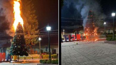 Photo of Pasa En Michoacán: Por 'Travesura' Incendiaron Árbol De Navidad Monumental En Tancítaro