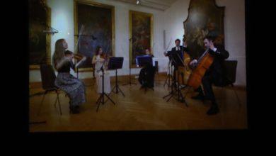 Photo of Wiener Kammersymphonie Cierra Con Broche De Oro La Edición 32 Del FMM
