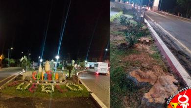 Photo of #Denúnciamesta En Cuitzeo cortan árboles de años para poner un jardín