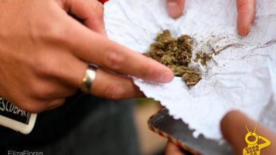 Photo of Peor Que La Palida: Por Traer Mot4 Poli Michoacán Detuvo A 32 Tras Fumaton En Morelia