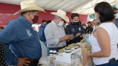 Photo of Con Programa, Reactivarán La Economía En Zonas Rurales De Morelia