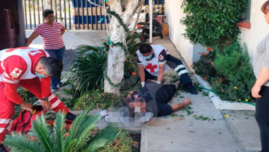 Photo of #Michoacán Hombre Termina Herido Al Caer Mientras Podaba Un Árbol