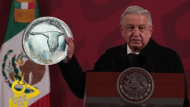 Photo of AMLO Emitirá Moneda Con Ganso En Lugar De Águila